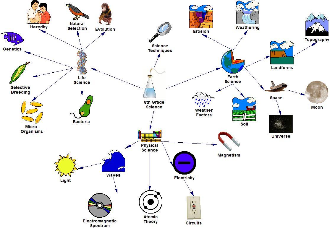 Science Grade 11 Sinhala Medium